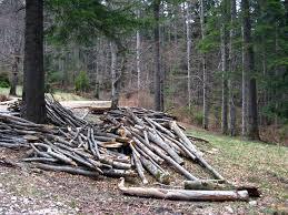 furt lemne
