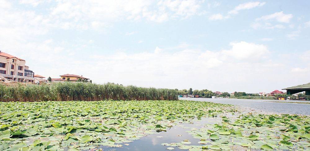 Lac Snagov
