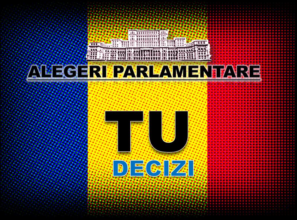 alegeri_parlamentare-2012